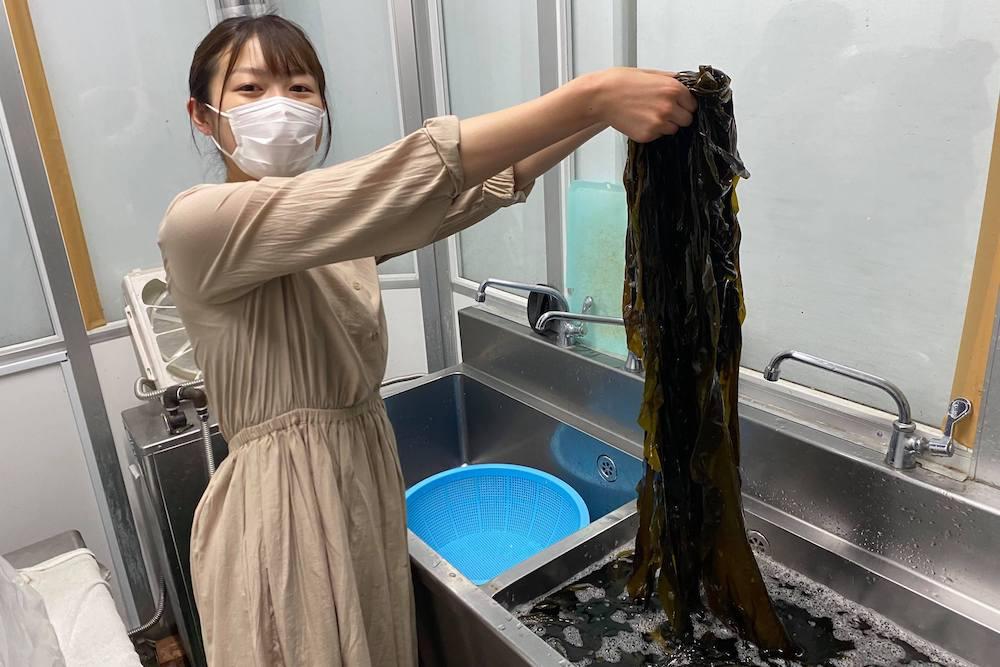 水揚げした昆布を水で洗っている様子